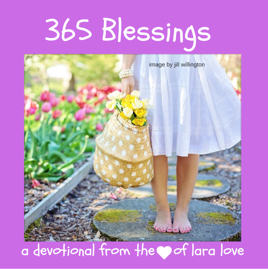 365 blessings book cover jill willington basket flowers pixabay pexels