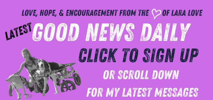 GOOD NEWS DAILY - HOMEPAGE - FOR EACH POST