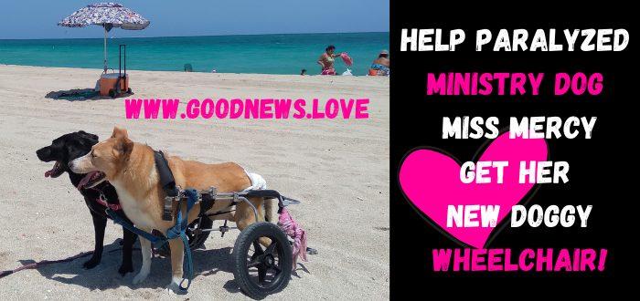 mercy donate new wheelchair walkin wheels